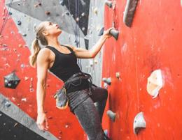 Indoor - Climbing - Sports Centre - Profit $ 2,443 p.w - North West Sydney