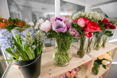 Retail  -  Florist - Northern Beaches . NSW  Same owner 10 years.