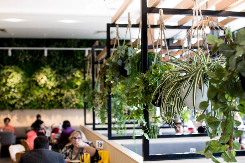 the-new-m-city-monash-coffee-shop-cafe-and-restaurant-in-clayton-5