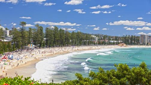 Courier, Freight, Shipping - PACK & SEND Manly, NSW: Brand NEW Opportunity!