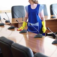 Well Established Cleaning Business
