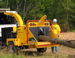 Well established tree maintenance business. Over 20 years.