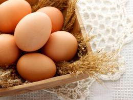 Run your own Egg citing business from home