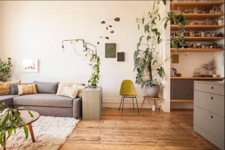 RARE AIRBNB OPPORTUNITY IN FITZROY $64,950