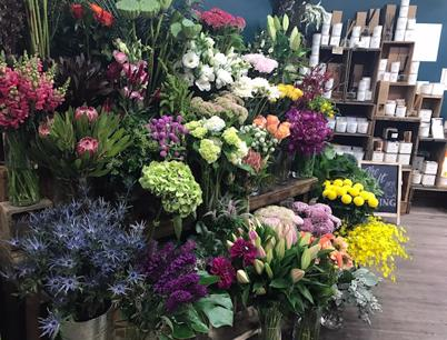 Multi-Award-Winning Florist & Gift Business - Cronulla Florist
