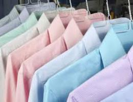 Brisbane West profitable Laundry service