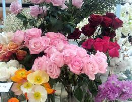 Busy Inner West Florist Sydney | Highly Profitable | Price Drop