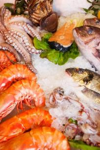 Well-Established Fresh Seafood- Takeaway Business For Sale -Busy Shopping Centre