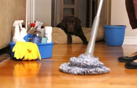 home-cleaning-donvale-4261598-0