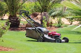Profitable Corporate Garden Maintenace Business