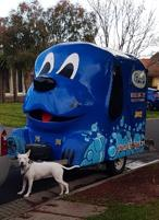 Love dogs? This mobile dog grooming business in Berwick is ready to GO!