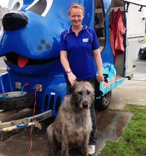 walk-into-the-belmont-established-dog-grooming-business-with-blue-wheelers-5