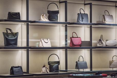 19023 Luxury Handbag Retail Store and Online Business