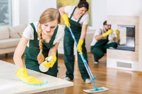 20037 Highly Successful Domestic and Commercial Cleaning Business