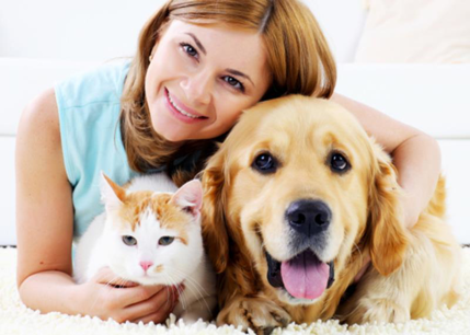 18237 Established And Highly Regarded Pet Minding Business