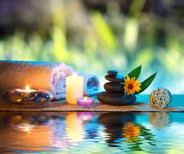 Managed Japanese Spa And Natural Therapies Business For Sale