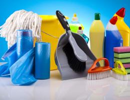 Profitable Cleaning Business