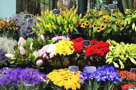 Flower Delivery Online Business - Heavily reduced price