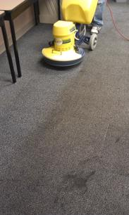 Carpet Cleaning Business for sale