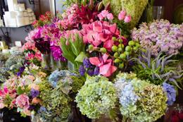 Florist in Sydney South-Retail-Wedding Gifts - Sales $16,000 p/w - Busy Corner