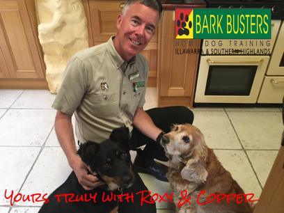 Dog Training Franchise Bark Busters Illawarra & Southern Highlands