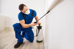 Pest control business for sale $85,000 WIWO