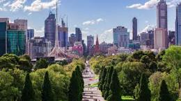 Melbourne's Best Tree Services Business
