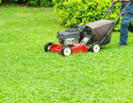 Garden Services Business - New year, new career, NEW PRICE. Great opportunity.