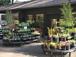GARDEN & BUILDING SUPPLIES STORE $500,000 (15013)