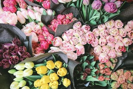 Well Established Florist For Sale - Sydney