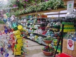 Northern suburbs Nursery business for sale- Ref: 15829