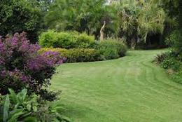 Landscape Lawns & Garden Maintenance (GLS116)