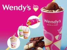 Wendy's Ice Cream Franchise
