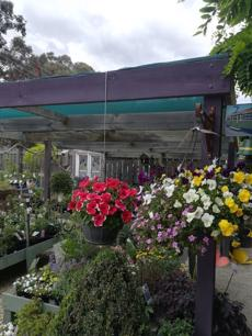 garden-centre-business-with-sands-soils-mulch-and-nursery-4