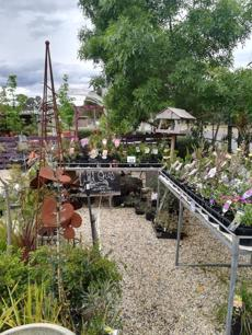 garden-centre-business-with-sands-soils-mulch-and-nursery-3