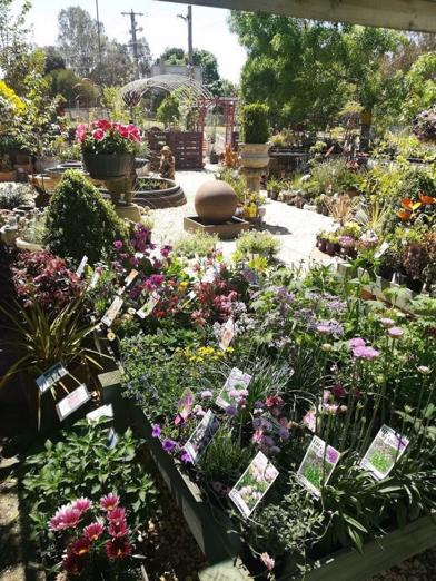 garden-centre-business-with-sands-soils-mulch-and-nursery-8